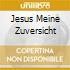 JESUS MEINE ZUVERSICHT