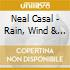 Neal Casal - Rain, Wind & Speed