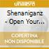 Shenaniganz - Open Your Eyes Or Cover..