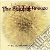 SHINING BREEZE: THE SLOWDIVE ANTHOLOGY