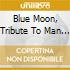 Blue Moon, Tribute To Man City
