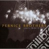 Pernice Brothers - Yours, Mine & Ours