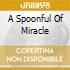 A SPOONFUL OF MIRACLE