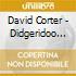 David Corter - Didgeridoo Mania II