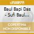 Baul Bapi Das - Sufi Baul - Madness & Happiness