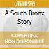 A SOUTH BRONX STORY