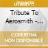 TRIBUTE TO AEROSMITH