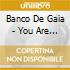 Banco De Gaia - You Are Here