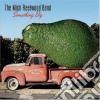 Mick Fleetwood Band - Something Big