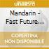 Mandarin - Fast Future Present