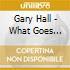 Gary Hall - What Goes Around?