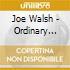 Joe Walsh - Ordinary Average Guy