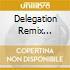 DELEGATION REMIX COLLECTION