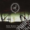 New Risen Throne - Crossing The Withred Regions
