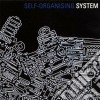 System - Self-organising System