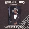 Homesick James & The Hypnotics - Sweet Home Tennessee
