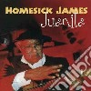 Homesick James - Juanita