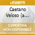 CAETANO VELOSO (A LITTLE MORE BLUE)