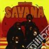 Appaloosa - Savana