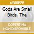 GODS ARE SMALL BIRDS, THE