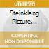 STEINKLANG PICTURE YEARS 1995-1996, THE