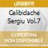 CELIBIDACHE SERGIU VOL.7