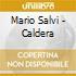 Mario Salvi - Caldera
