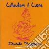 Davide Maggioni - Collaudami Il Cuore