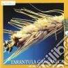 Tarantula Garganica - Chi Non Capisce L'amore Abbastanza