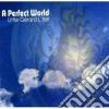 Little Gerard L'her - A Perfect World