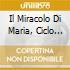 IL MIRACOLO DI MARIA, CICLO DI 4 OPERE