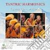 Gyume Tibetan Monks - Tantric Harmonics