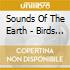 Sounds Of The Earth - Birds In The Rainforest