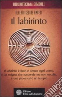 Il labirinto libro di Ambesi Alberto C.